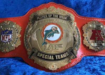 Miami Dolphins Special Teams Player of the Week