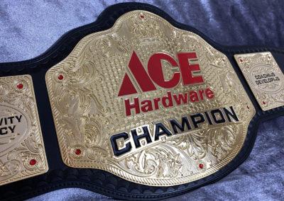 Ace Hardware Championship