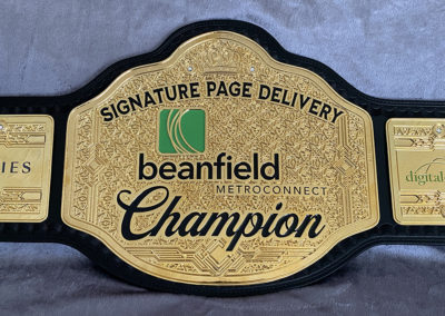 Beanfield Metroconnect Champion